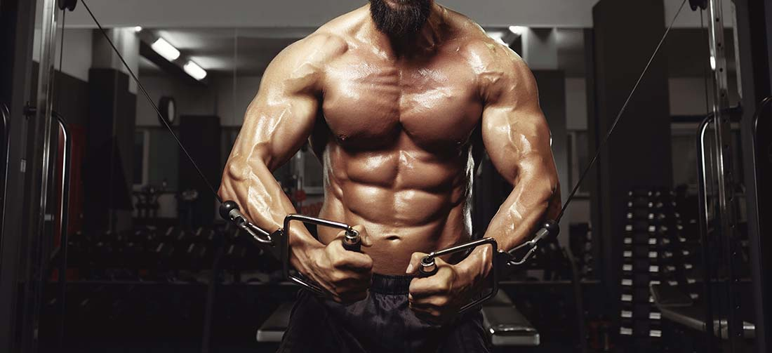 Your Premium Source of Anabolics: Buy Steroids Online